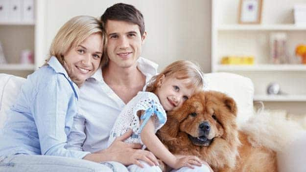 Wills & Trusts dog-young-family Direct Wills Winkfield